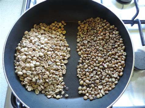 Robusta Coffee your own coffee blend with arabica and robusta
