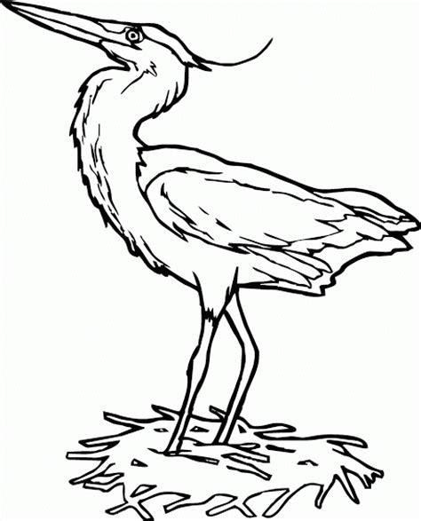 mewarnai gambar burung bangau menjaga sangkar contoh anak paud