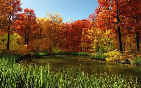 fall wallpaper for macbook 1680x1050 fall pond desktop pc and mac wallpaper