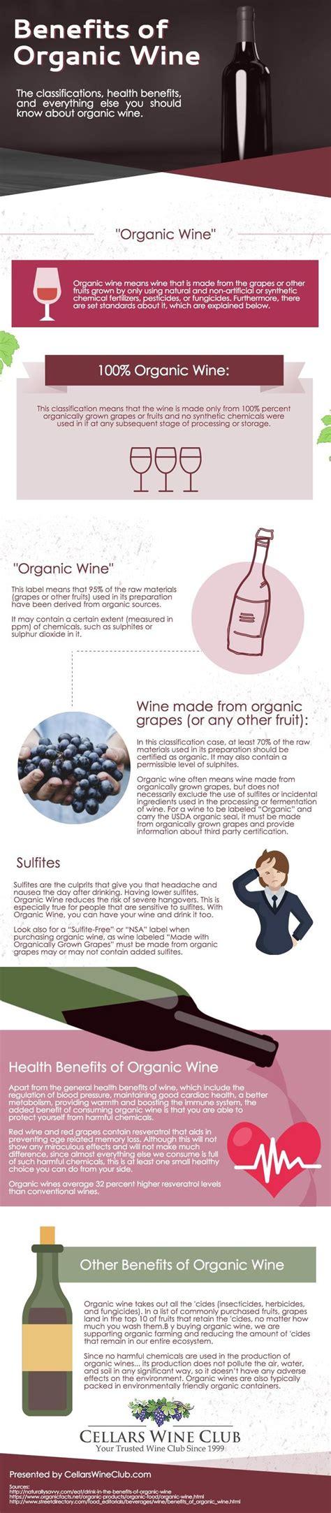 Sulfite Free Wine Detox by Best 25 Organic Wine Ideas On Wine Facts