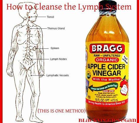 Apple Cider Vinegar Detox Headache by Best 25 Lymph Nodes Ideas That You Will Like On