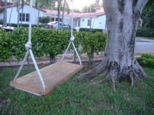 Old Fashioned Rope Tree Swing Natural Playground Pinterest