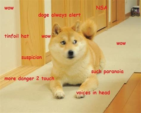 Shibe Meme - doge meme the best of doge
