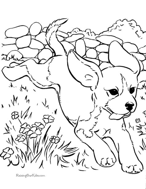 coloring pictures of dogs and puppies realistic dog coloring pages coloring home