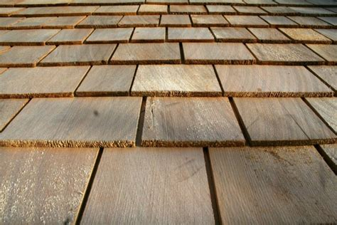 Wooden Roof Shingles For Sheds by The Wood Shed Copper Beech Garden Design Hereford