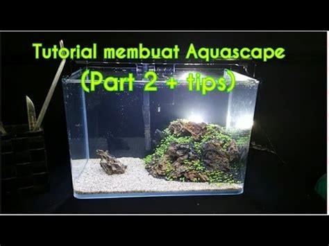 tutorial membuat aquascape  pemula part  tips