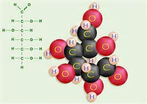 carbohydrates molecule when is a time athletics health and nutrition
