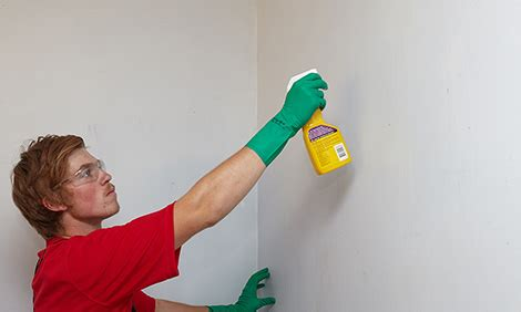 clean wall how to clean walls bunnings warehouse