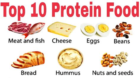 i protein foods 10 best protein diet foods