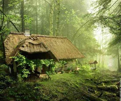 Maison En Pleine Foret by 11 Maisons F 233 233 Riques Au Coeur De La Nature Dans Lesquelles