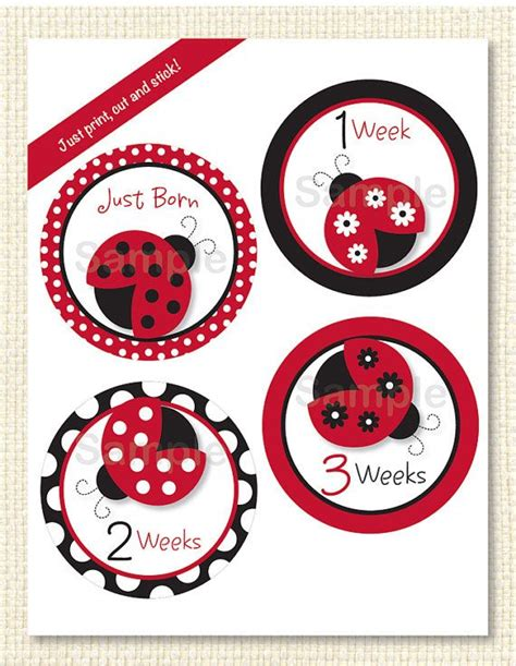 printable bug stickers 154 best images about stink bug on pinterest mickey