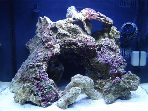 live rock aquascape 17 best images about aquascaping on pinterest aquarium