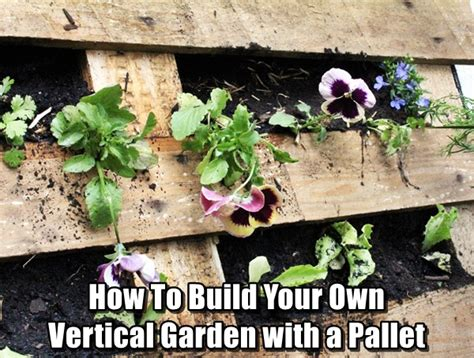 How To Make Your Own Vertical Garden How To Build Your Own Vertical Garden With A Pallet Shtf