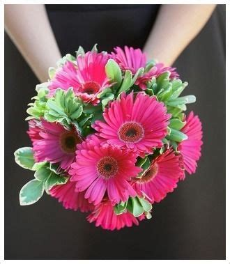 Wedding Bouquets Using Gerberas by 32 Best Gerber Arrangements Images On