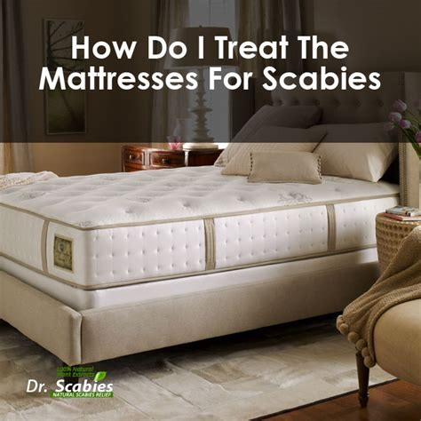 How To Clean Your House Of Scabies by How Do I Treat The Mattresses For Scabies Best Scabies Treatment Dr Scabies Home