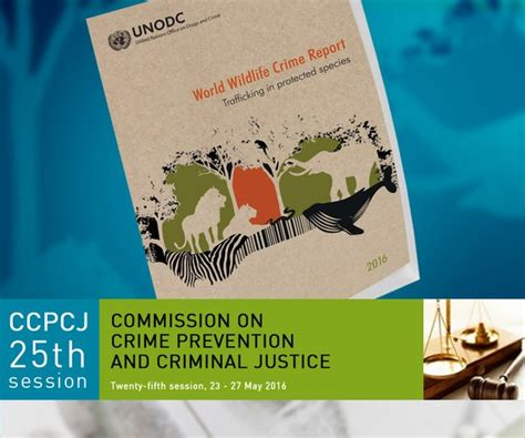 un targets wildlife crime in the lead up to cites cop17