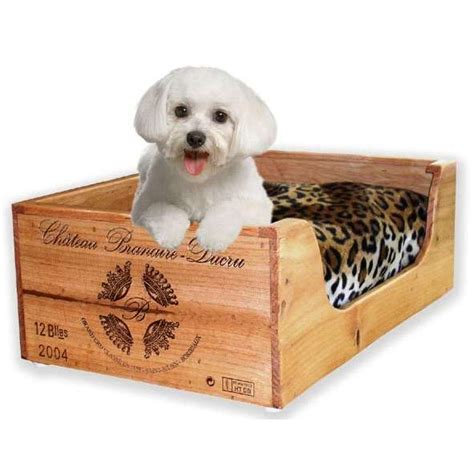 house training small dogs dog beds for small dogs