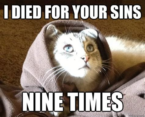 Jesus Cat Meme - best of the kitty jesus meme 14 pics pleated jeans