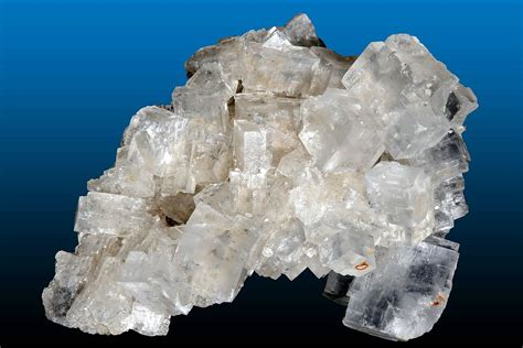 what is a salt l halite