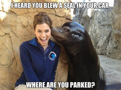 You Blew It Meme - i heard you blew a seal in your car where are you parked