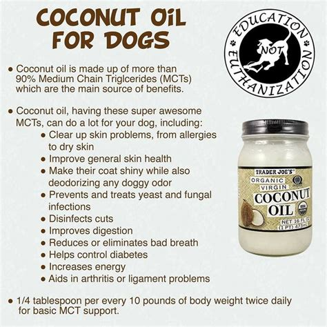 benefits of coconut for dogs best 25 spots ideas on benedryl for dogs benadryl for cats and