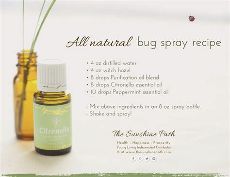 essential oils for bed bugs 25 best ideas about bug spray recipe on pinterest essential oil bug spray homemade