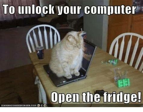 Cat Laptop Meme - to unlock your computer open the fridge cats meme on sizzle