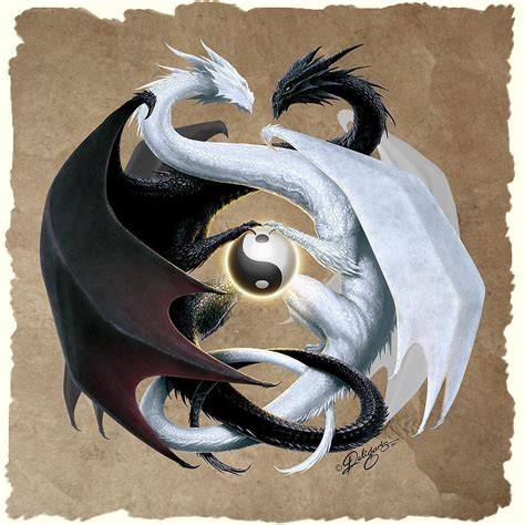 dragon yin yang tattoo yin yang wallpapers wallpaper cave