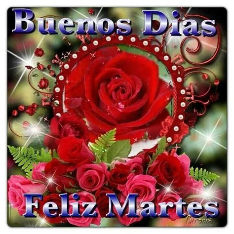 descargar imágenes feliz martes amor 1000 images about feliz tarde on pinterest get well