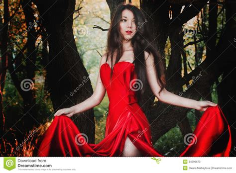 beautiful in dress stock photos image 34599673