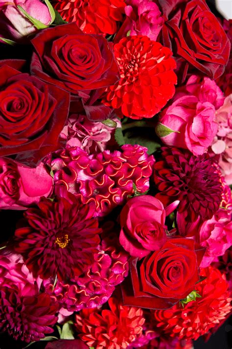 red roses  red hydrangea floral arrangement flowers