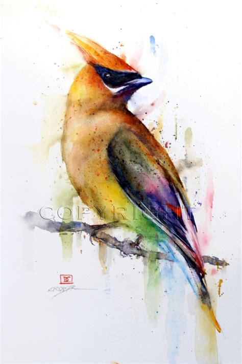 watercolor tattoo bird cedar waxwing watercolor bird print by dean crouser bird