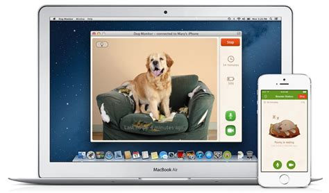 puppy monitor monitor for mac now available for