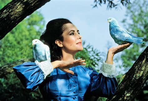film blue bird elizabeth taylor 1932 2011 web site the blue bird