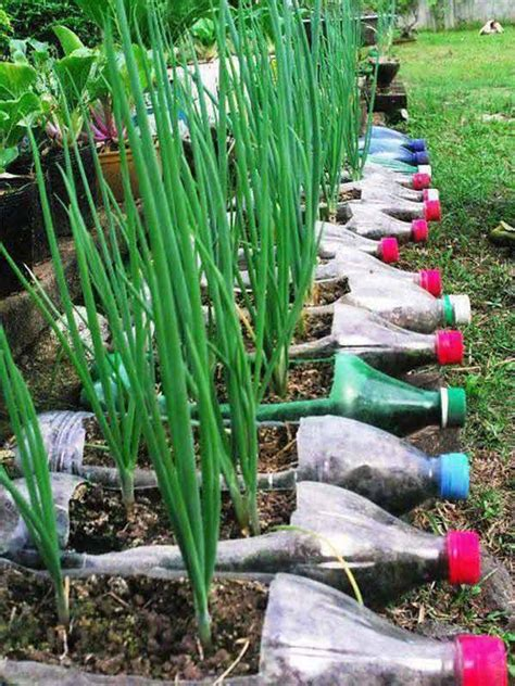 plastic plants for the garden 23 insanely creative ways to recycle plastic bottles into