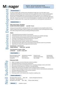 International Business: Cv International Business