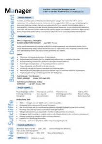 Business Development Manager Sample Resume sample resume business development manager jianbochen com