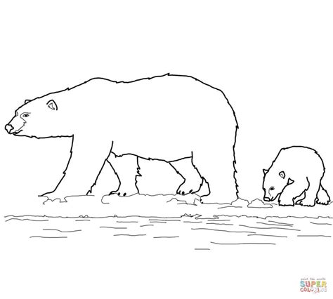 dltk bear coloring pages search results for coloring page of a polar bear