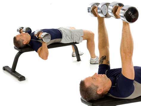 bench press levels weight lifting plan strength level 2 a