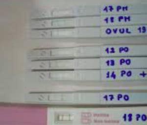 test per ovulazione test per ovulazione cos 232 e come si usa mamma perfetta