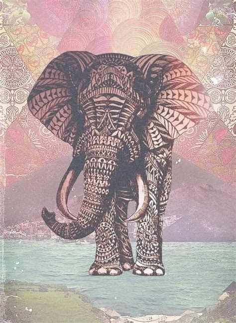 girly elephant wallpaper fondos tumblr para whatsapp buscar con google fondos