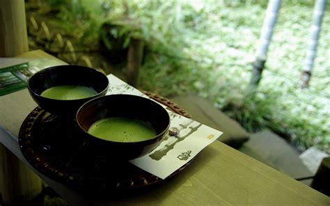 Sopu Matcha Green Tea soup hd wallpaper and background image 1920x1200 id 330840