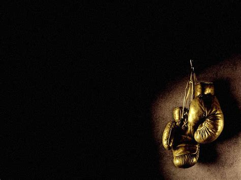 gold glove wallpaper download wallpaper gold boxing gloves photo wallpapers