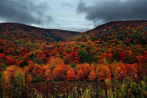 fall colors in virginia fall foliage