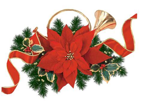 imagenes flores de navidad im 193 genes y gifs animados im 193 genes de flores de navidad