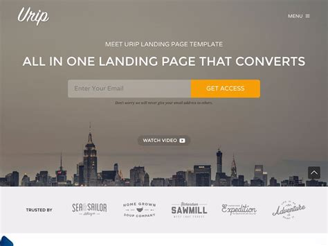 wordpress splash page template 30 best landing page themes 2016 athemes