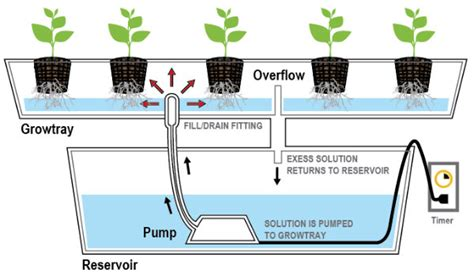 how much does section 8 cover types of hydroponics systems a complete guide the