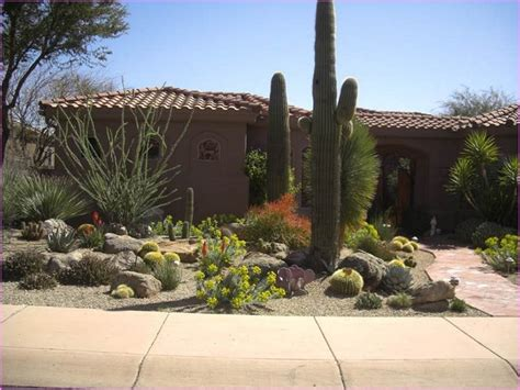 desert landscape front yard ideas iwmissions landscaping