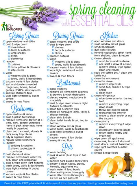 when is spring cleaning spring cleaning with no chemicals recipes plus free