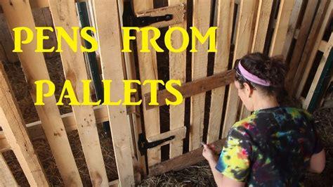 build goat pens  pallets pallet fence goat
